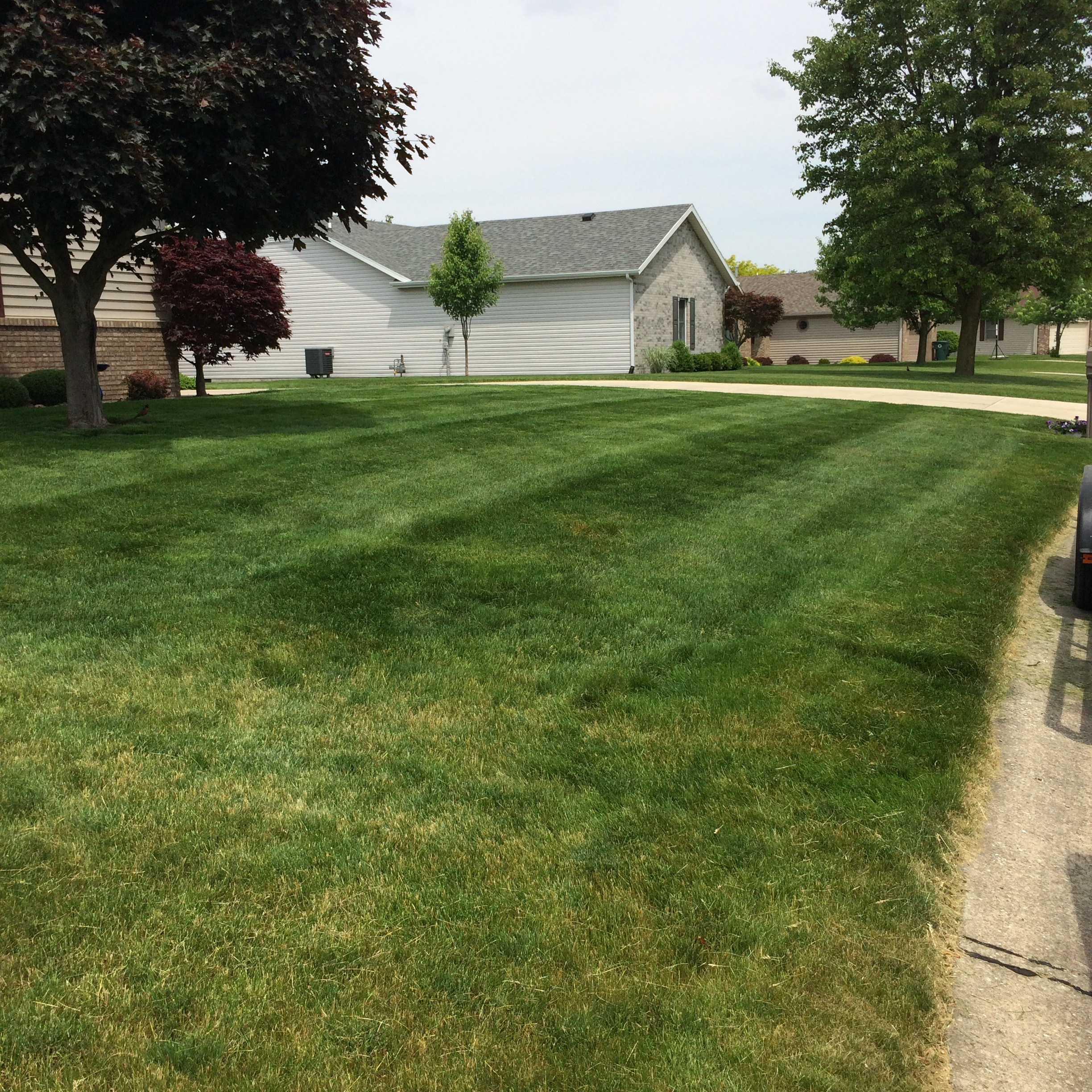 Muncie Indiana Lawn Mowing And Landscaping Services